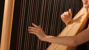 Zoom sur la harpe